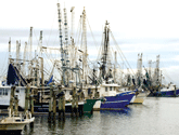 Photo of fishing boats