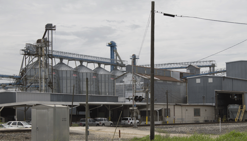 outside view of a rice mill