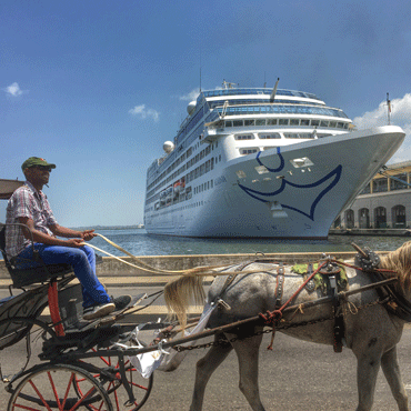 photo of a cruise ship in harbor as a man driving a horse-drawn carriage passes by on shore