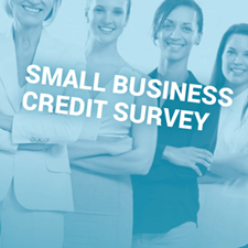 photo of women and small business credit survey