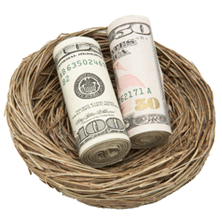 photo of nest with money in it